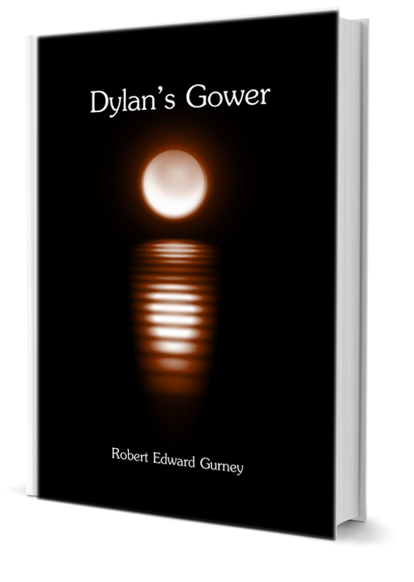 dylans-gower-cover-angle